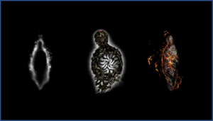 Items counteracting effects of the undead curse across Dark Souls I, II, and III. From left to right: Humanity (DSI), Human Effigy (DSII), Ember (DSIII). Despite the shift towards a fire theme in the third game, the three items have comparable shapes.